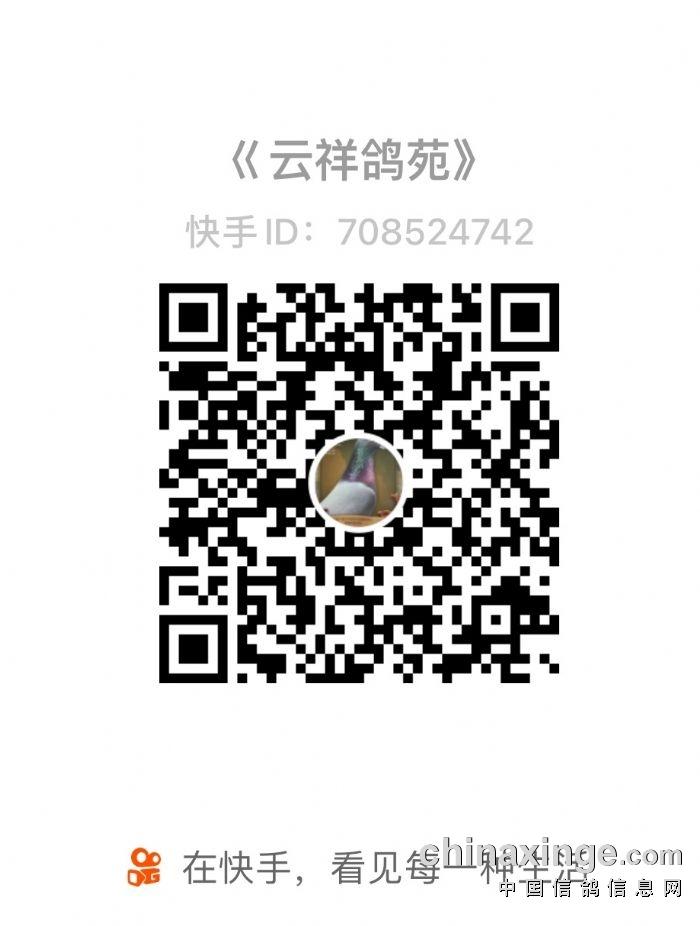 彩云公棚秋棚50公里训放直播网站(不排除漏扫)